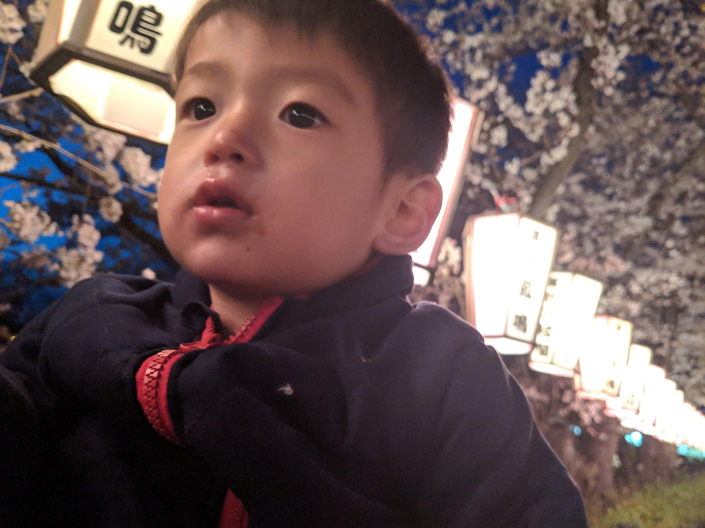 家族と丹波へ夜桜見物